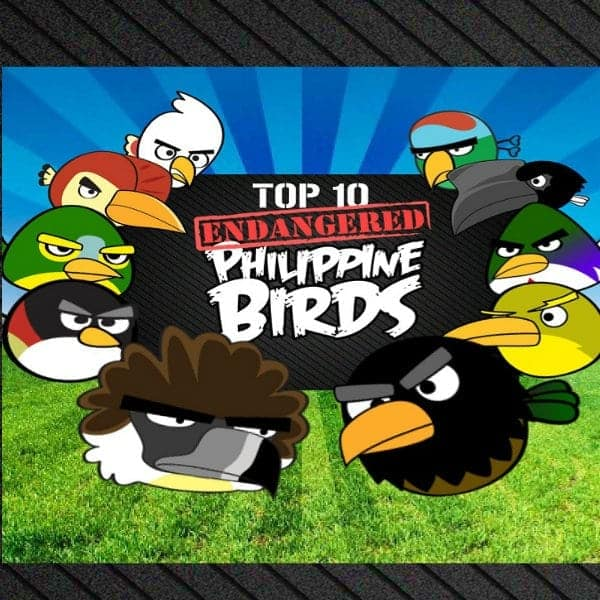 top 10 pinoy angry birds