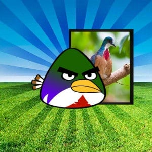 negros bleeding heart pinoy angry birds