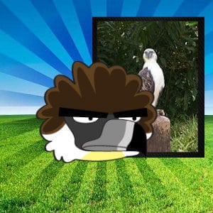 philippine eagle pinoy angry birds