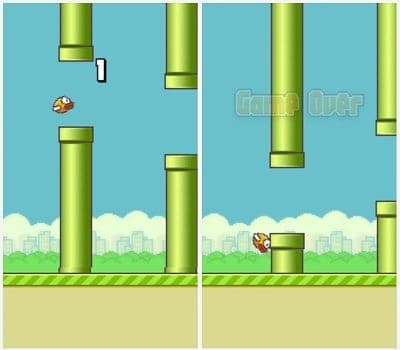 hit box flappy bird