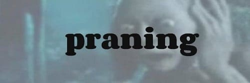praning slang word origin
