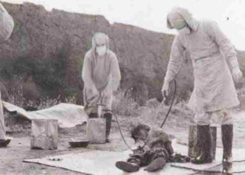 Japanese WWII biological warfare