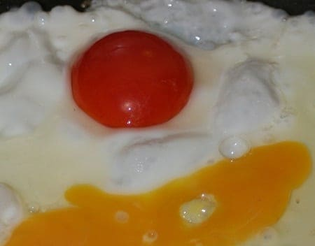 red egg yolk