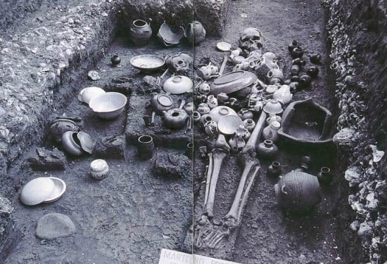 Skeletal remains and artifacts recovered at the Santa Ana excavations