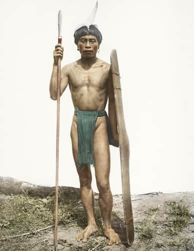 An Ifugao warrior poses with a shield and spear for a portrait