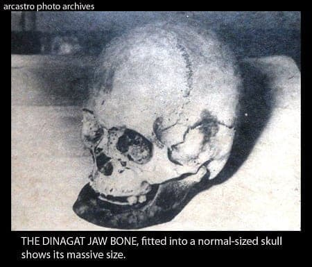 Jaw bone of the Dinagat giant